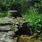 Джерело мінеральної води в 200 м